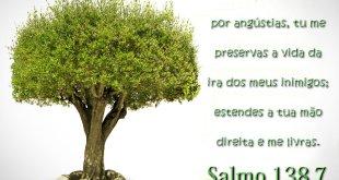 Papel de Parede Salmo 138 7