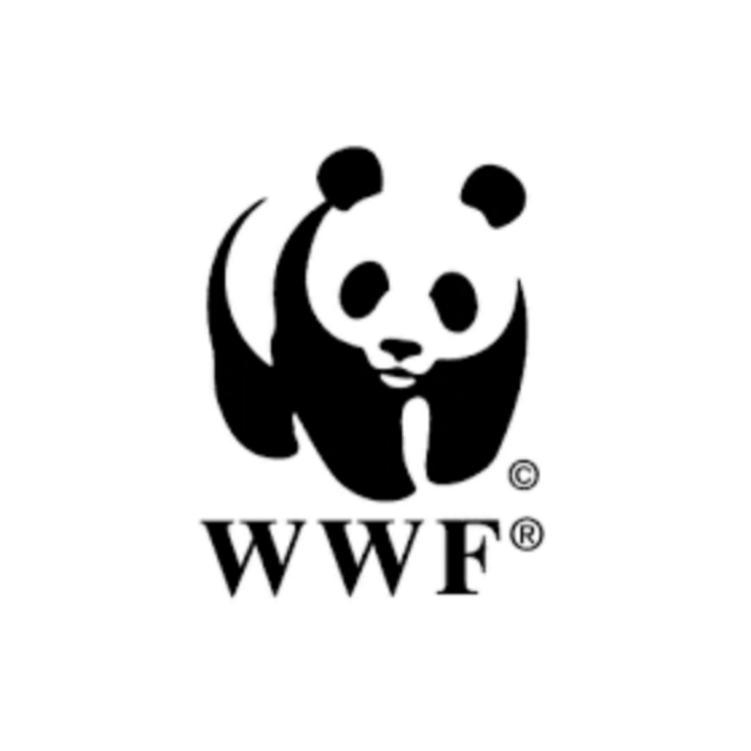 New Job Opportunity At WWF (World Wide Fund for Nature) 2020