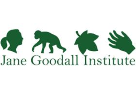 3 Job Vacancies At Jane Goodall Institute (JGI)