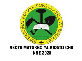 Matokeo Ya Kidato Cha Nne 2020 NECTA | Form Four Results 2020/2021 | CSEE NECTA Results 2020