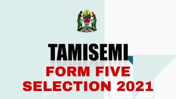 Form Five Selection 2021 TAMISEMI | Waliochaguliwa Kidato Cha Tano 2021