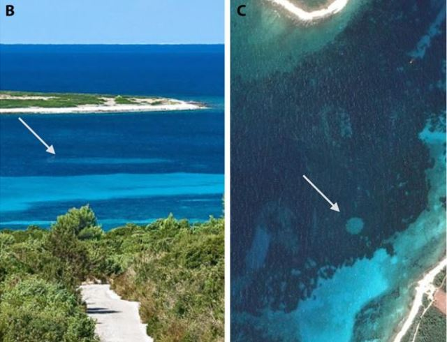 Mysterious 'Fairy Circles' In Ocean Could Lead To Mass Extinction Capture jhb6