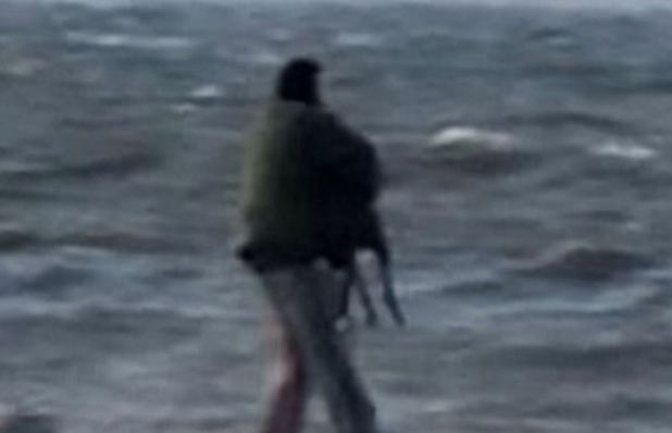 Man Filmed Repeatedly Throwing Greyhound Into Freezing Sea dog 4