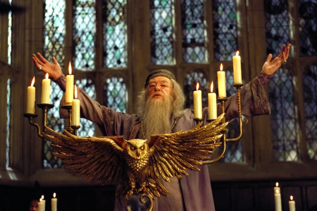 People Who Read Harry Potter Are Better Humans In General, Study Says dumbledore mate