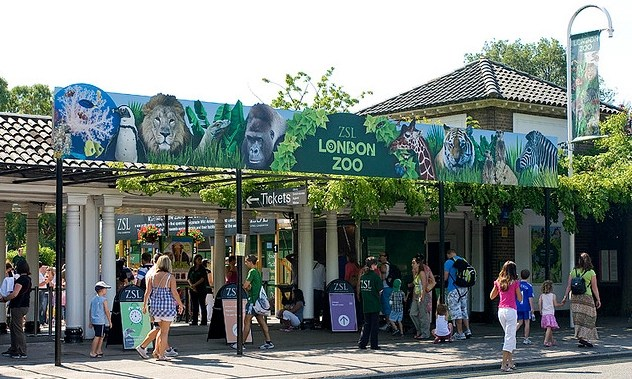 London-Zoo-Zoological-Society-of-London1