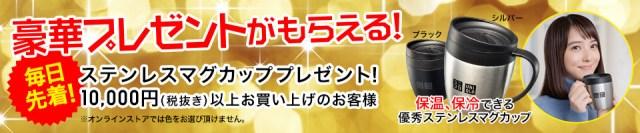 豪華プレゼントがもらえる!毎日先着!ステンレスマグカッププレゼント!10,000円(税抜き)以上お買い上げのお客様