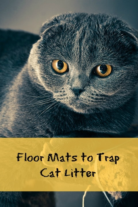 mats to catch cat litter
