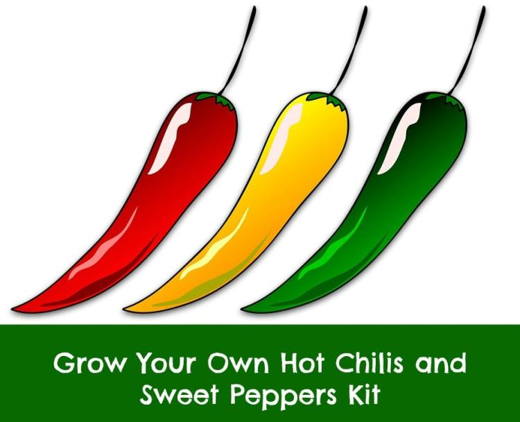hot chili and sweet pepper kit