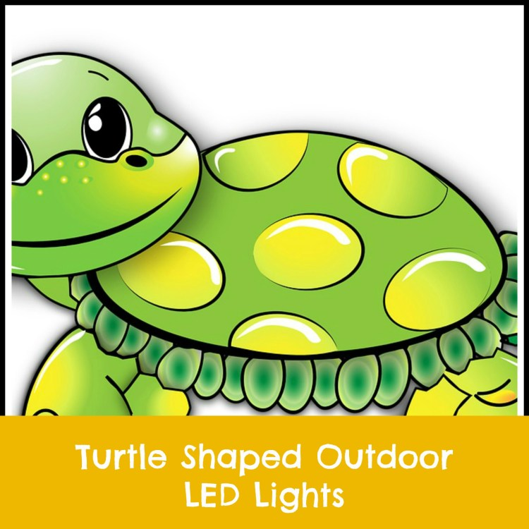 turtle LED lights