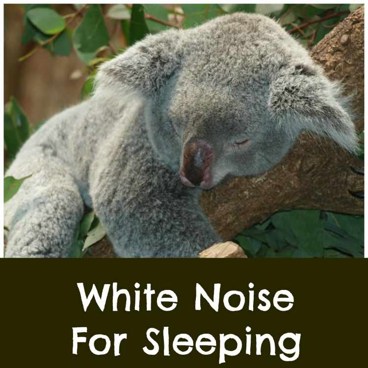 white noise sleep fan