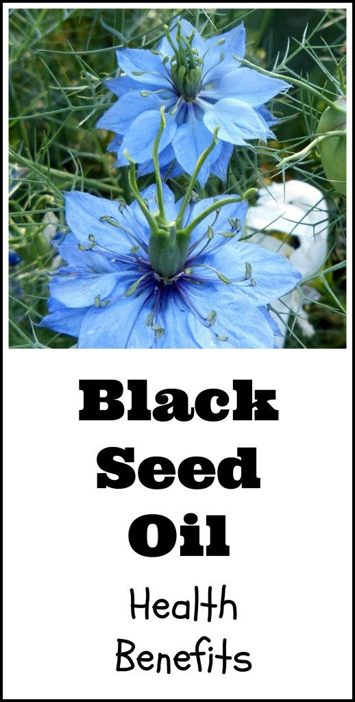 black seed oil capsules health benefits