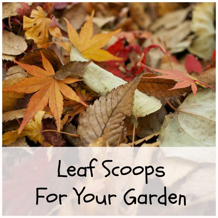 leaf scoops for garden