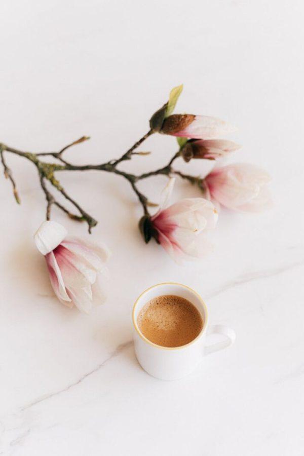 pexels photo 4210881 10 tipuri de cafea