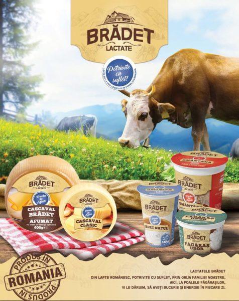 Fabrica de produse lactate Brădet