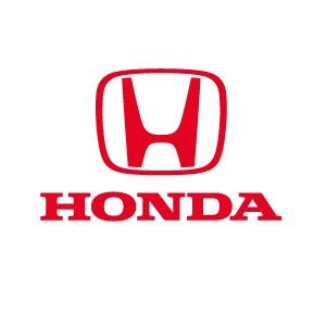 Pilot de curse cu Honda CivicTypeR
