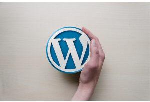 diferenta dintre wordpress com si wordpress org avantaje si dezavantaje e1622664149730 Diferența dintre WordPress.com și WordPress.org