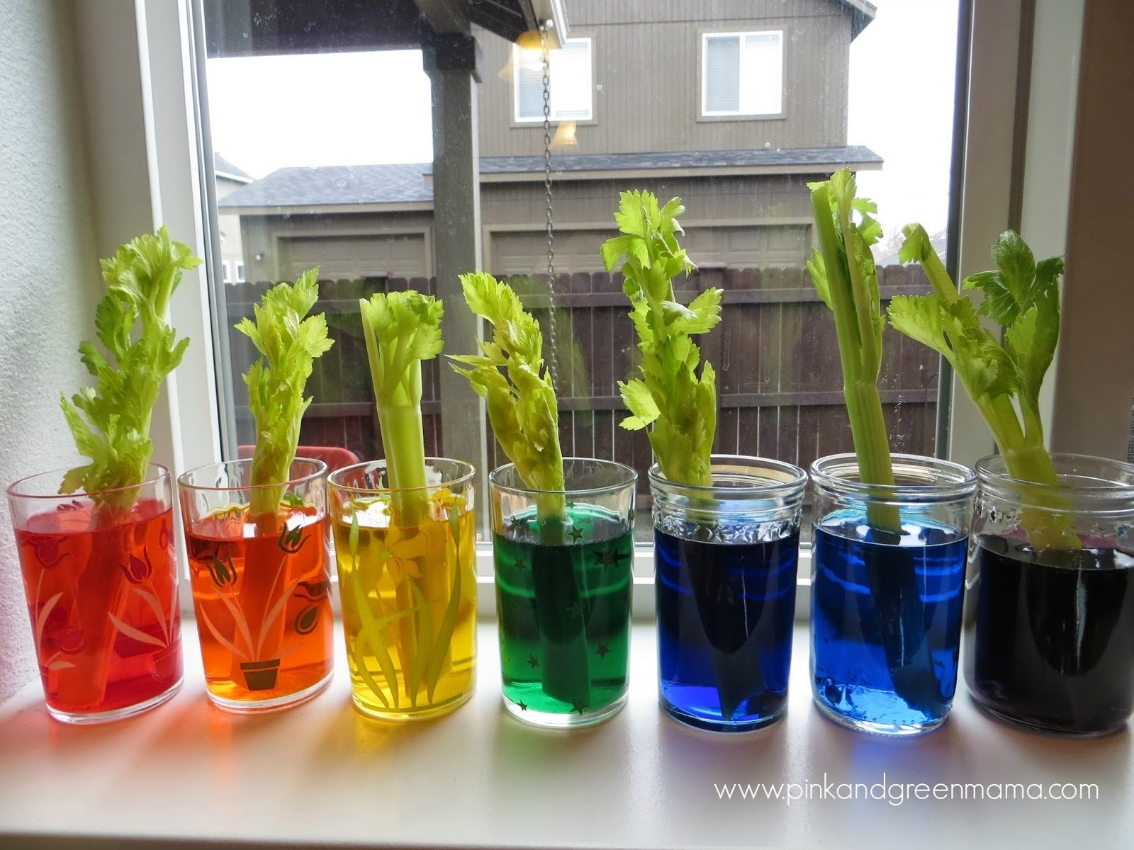 10 Spectacular Science Fair Project Ideas For Kids In 4th