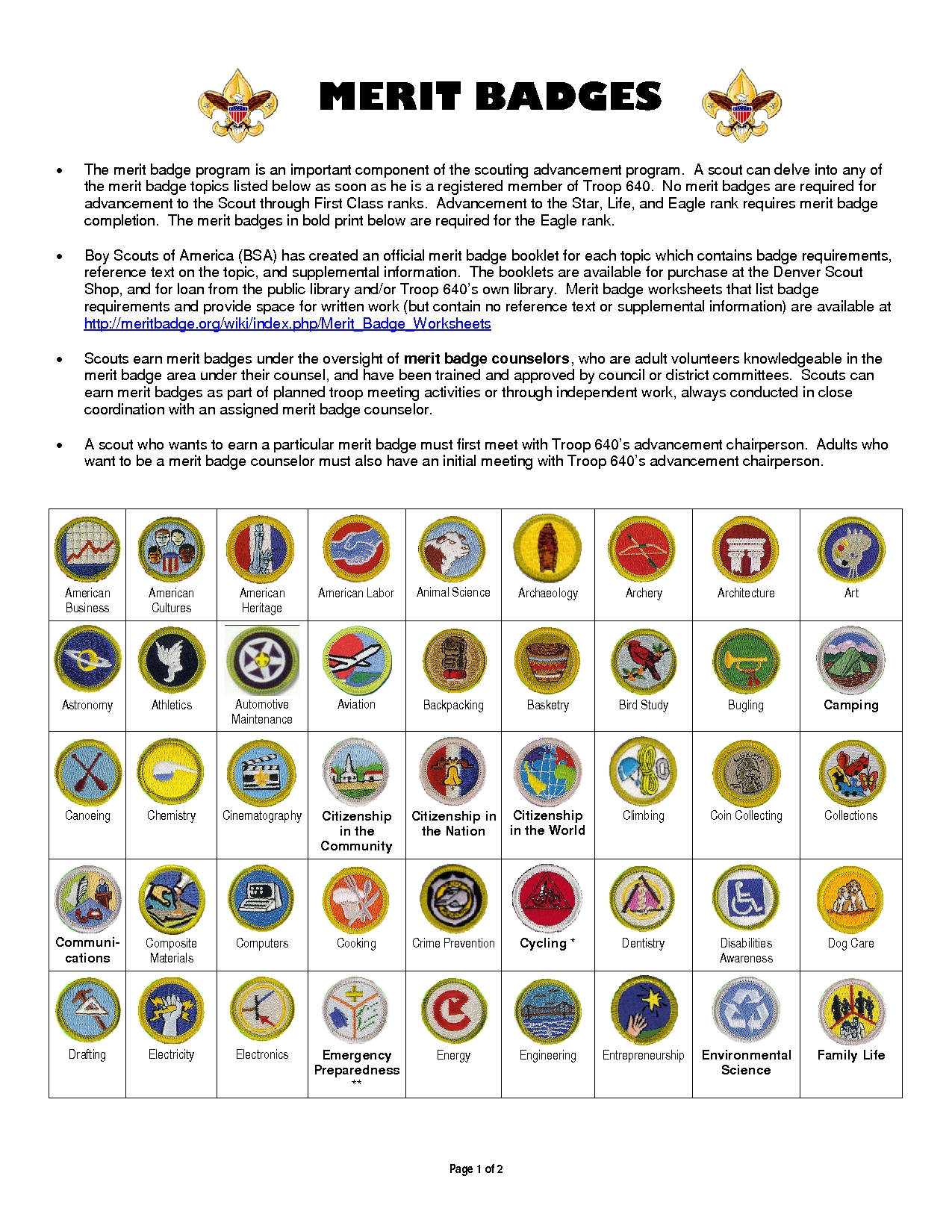 10 Gorgeous Family Life Merit Badge Project Ideas