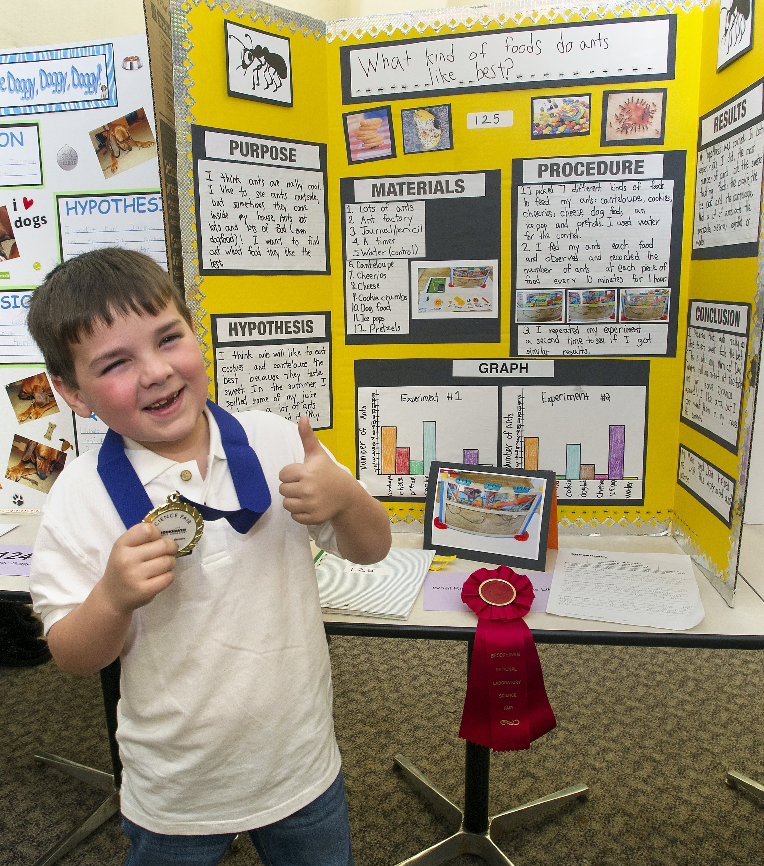 10 Fantastic Science Fair Project Ideas For 1st Graders