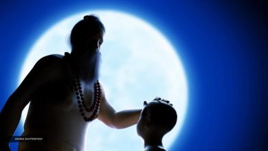 Guru Purnima essay you can read on this special occasion