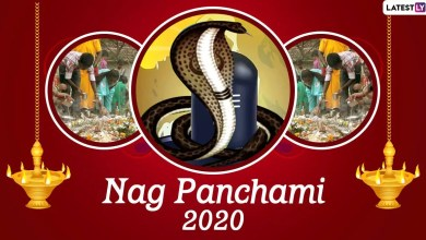 Nag Panchami 2020 HD Images and Wallpapers For Free Download Online: WhatsApp Stickers, Facebook Messages and Greetings to Celebrate the Hindu Festival of Worshipping Snakes