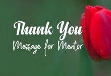 Thank You Messages for Mentor