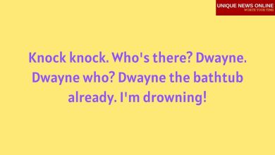 50+ Best Funny Knock Knock Jokes for Kids and Adults