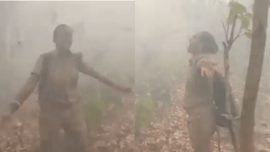 Forest Officer Viral Dance Video: Woman forest officer dances in joy as rain showers over Similipal after forest fire
