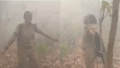 फॉरेस्ट ऑफिसर व्हायरल डान्स व्हिडीओ: जंगलातील आगीनंतर सिमिलीपालवर पावसाच्या सरी बरसल्यामुळे बाई वन अधिकारी आनंदात नाचत