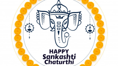 Happy Sankashti Chaturthi 2021: WhatsApp Status Video Download