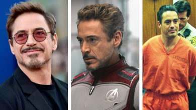 Robert Downey Jr Biography in Hindi and Telugu: Best Movies, Career, Net Worth, Awards, personal life, and more