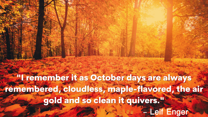 """Quote: """"I remember it as October days are always remembered, cloudless, maple-flavoured, the air gold and so clean it quivers."""" – Leif Enger"""
