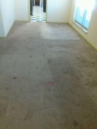landlord carpet cleaning before