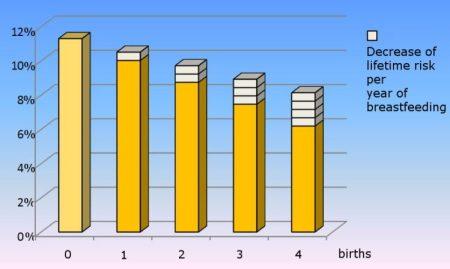 Disminución del riesgo vital por año de lactancia. Fuente: Wikimedia.