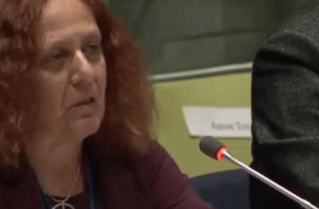jackie cabasso ufpj un npt review conference united nations