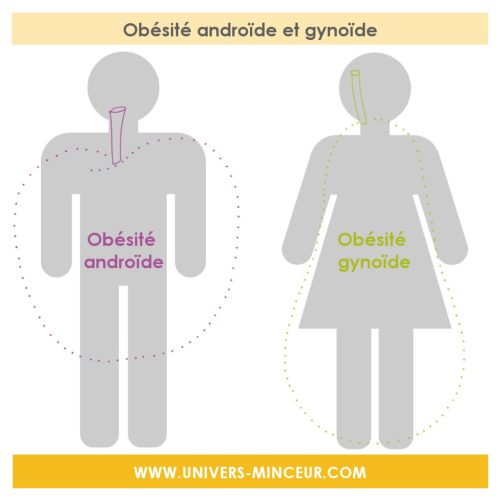 obésité androïde gynoïde