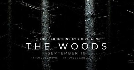 the woods banner