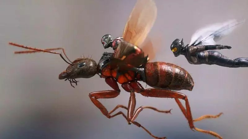 Nuove foto da Entertainment Weekly per Ant-Man and the Wasp