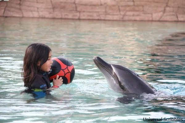 Travelling with Kids: Swimming With Dolphins