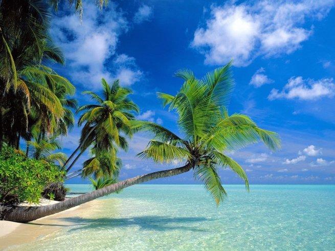 best tourist attractions in solomon islands