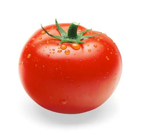 من فوائد الطماطم الوقاية من مرض سرطان الكلى