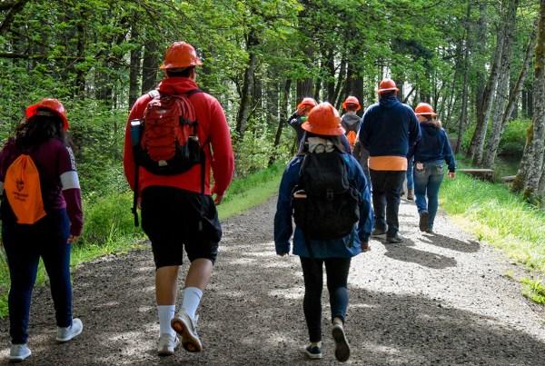 mestrado-para-engenheiros-florestais-na-europa