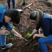 Nicolaitas  por el Planeta, de la palabra a los hechos; inician campañas de reforestación
