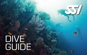 182412-Dive-Guide