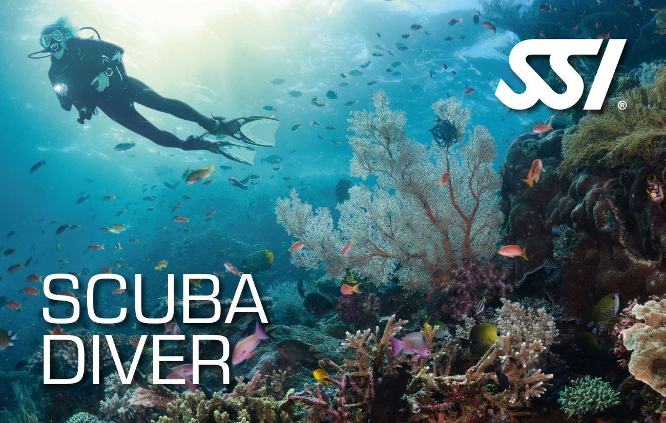 Corso subacqueo Scuba Diver SSI