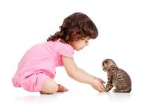 gatos_criancas