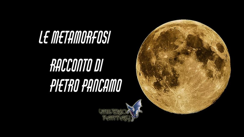 Le Metamorfoso - Pancamo - Copertina