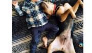 bimbo con camicia e cane dormono