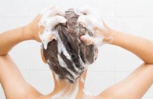 shampoo inquina