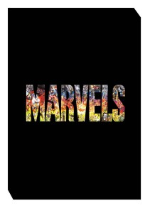 MARVELS PLATINUM EDITION SLIPCASE